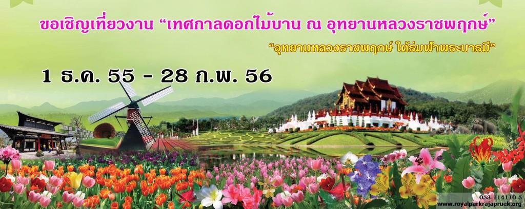 จังหวัดเชียงใหม่ เชิญเที่ยวงานเทศกาลดอกไม้บาน 1 ธันวาคม 2555 - 28 กุมภาพันธ์ 2556