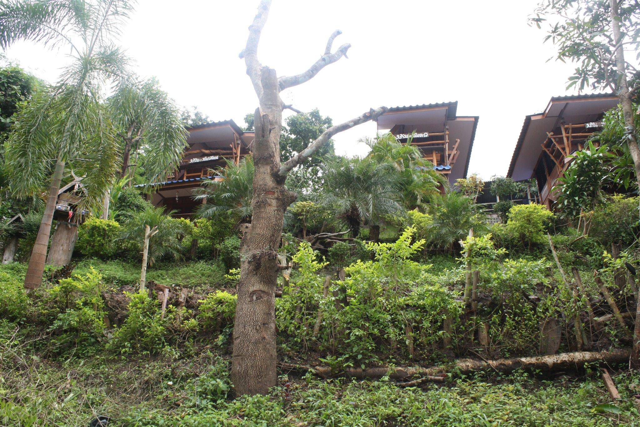 สัมผัสที่พักที่ใกล้ชิดธรรมชาติ วิมานเมฆ รีสอร์ท (wimanmake resort) อำเภออุ้มผาง จังหวัดตาก