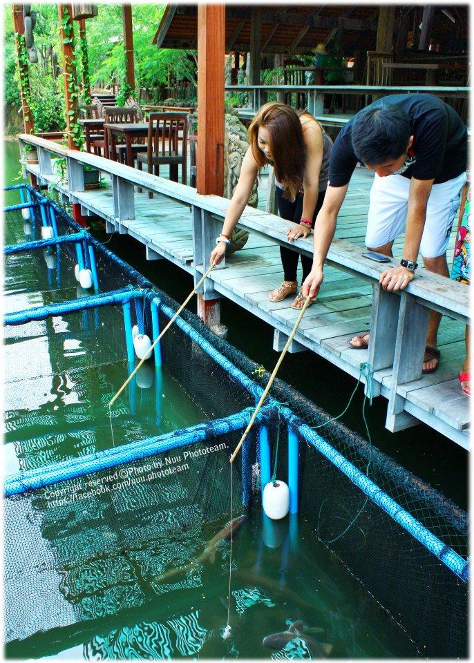 กระชังเลี้ยงปลาฉลาม