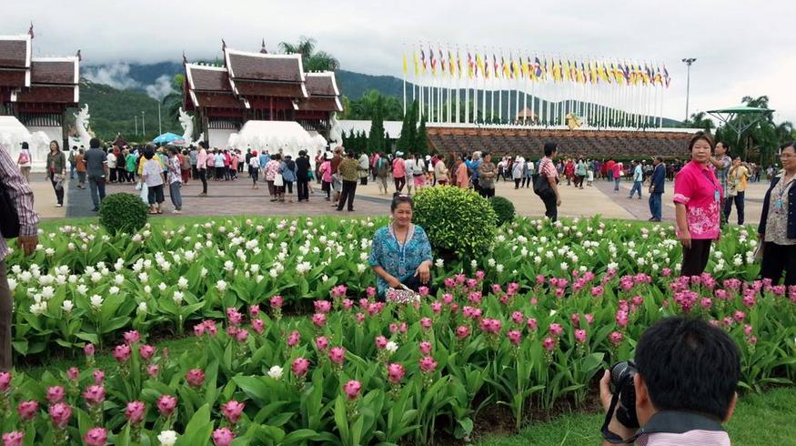 เทศกาลปทุมมา ทิวลิปแห่งสยาม 25 กรกฎาคม - 18 สิงหาคม 2556 ณ อุทยานหลวงราชพฤกษ์ จังหวัดเชียงใหม่