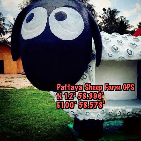 พิกัด GPS ฟาร์มแกะพัทยา (Pattaya Sheep Farm)