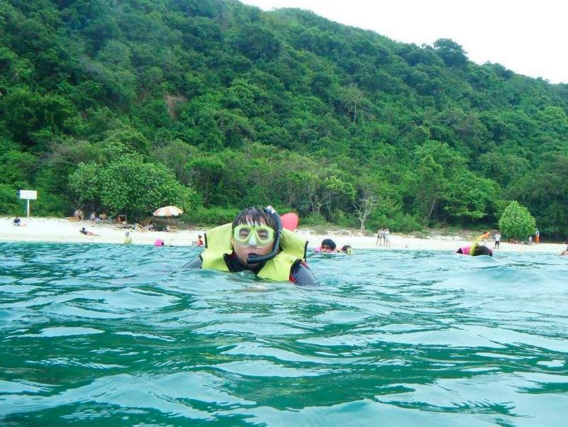 ดำน้ำ ดูปะการัง