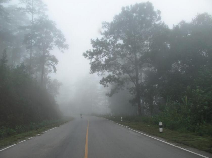 วิธีขับขี่ให้ปลอดภัยเมื่อผ่านเส้นทางหมอกหนา