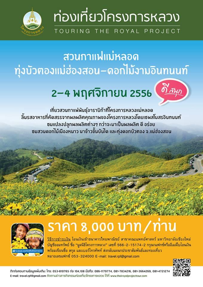 ทริปเที่ยวสวนกาแฟแม่หลอด ทุ่งบัวตองแม่ฮ่องสอน ดอกไม้งามอินทนนท์ 2-4 พฤศจิกายน 2556