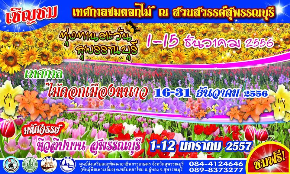 เทศกาลชมดอกไม้ ณ สวนสวรรค์สุพรรณบุรี 1 ธันวาคม 2556 - 12 มกราคม 2557