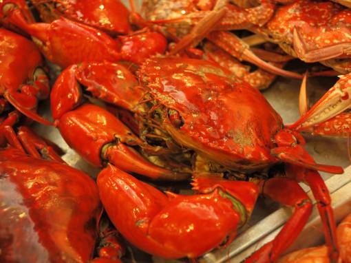 เทศกาลอาหารทะเลจังหวัดสมุทรสาคร ครั้งที่ 13 วันที่ 27 กุมภาพันธ์ - 3 มีนาคม 2557