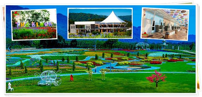 โรงแรมเดอะ บลูม บาย ทีวี พูล (The Bloom Hotel by TV Pool) จังหวัดนครราชสีมา