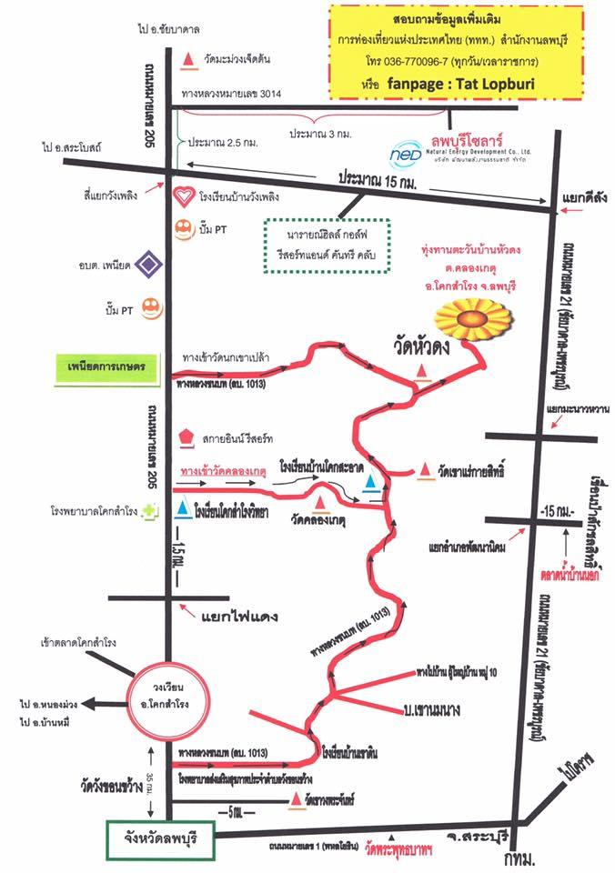 เส้นทางชมทุ่งทานตะวันบานลพบุรี จังหวัดลพบุรี