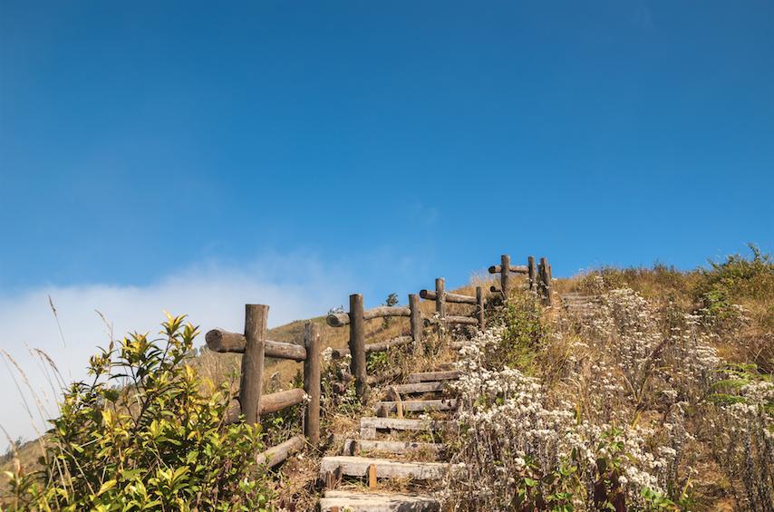 เส้นทางเดินศึกษาธรรมชาติกิ่วแม่ปาน จังหวัดเชียงใหม่