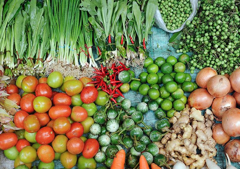 เกษตรไทยก้าวหน้า ภายใต้ร่มพระบารมี 16-20 สิงหาคม 2560 ณ สวนลุมพินี กรุงเทพฯ
