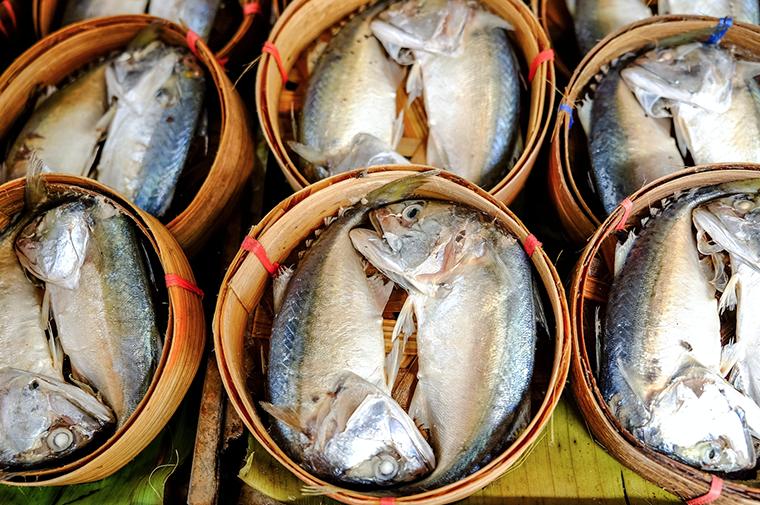 เทศกาลปลาทูอร่อยที่ท่าฉลอม ครั้งที่ 10 วันที่ 17-22 พฤศจิกายน 2560 ณ ริมเขื่อนวัดช่องลม จังหวัดสมุทรสาคร
