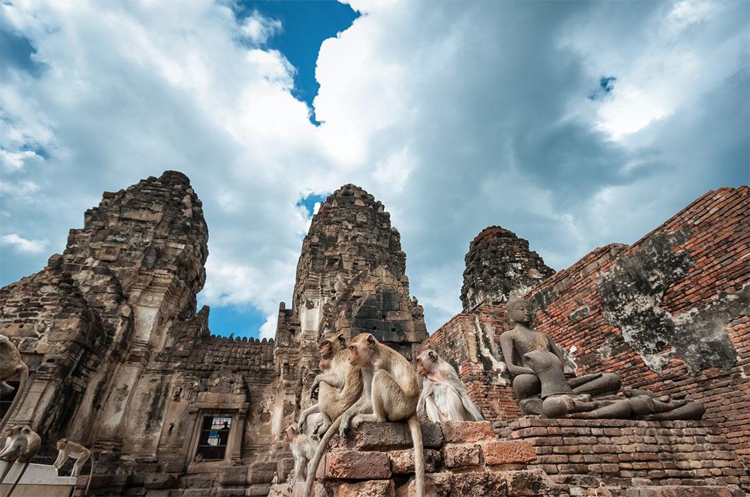 งานเลี้ยงโต๊ะจีนลิง ครั้งที่ 30 (อารยสถาปัตย์) 25 พฤศจิกายน 2561 ณ พระปรางค์สามยอด จ.ลพบุรี